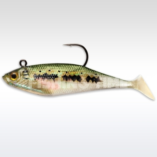 Storm Wildeye Swim Shad 4 BB
