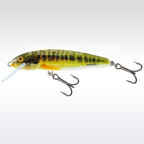 Salmo Minnow Floating 7 HRM