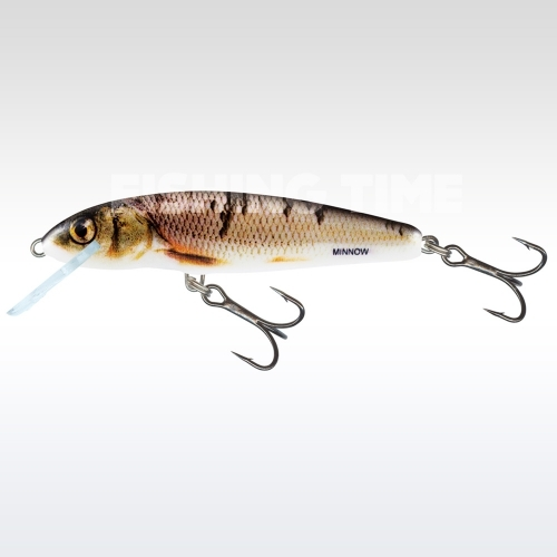 Salmo Minnow Floating 7 WD