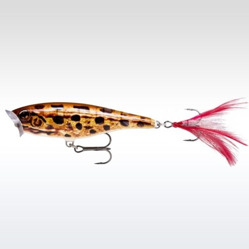 Rapala Skitter Pop 7 (SP-7) FL