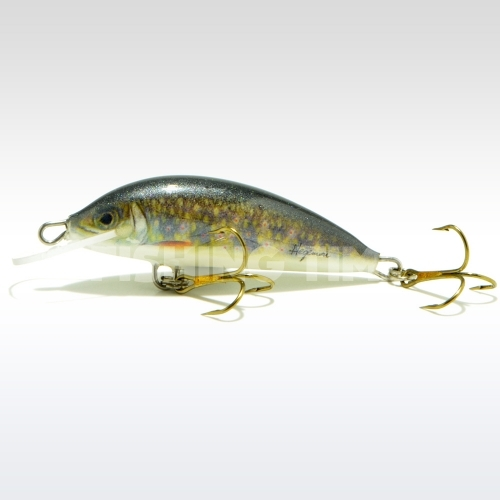 Hegemon Lucky 5 F Brook Trout
