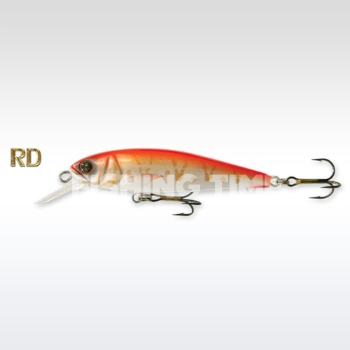Goldy  Gold Fish 5.5 F RD