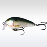 Rapala Shallow Fat Rap - wobbler 5cm, F (8g)