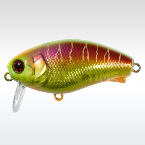 Illex Cherry 0 Footer 56 Visible Spawning Tiger