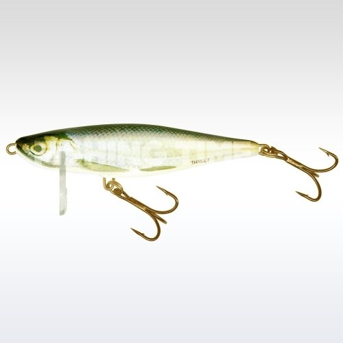 Salmo Thrill 7 RBL